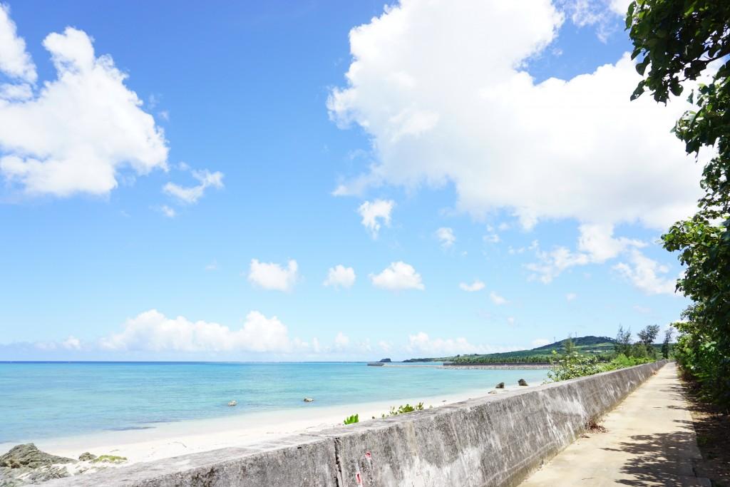 お散歩に。伊野田漁港からつながる堤防