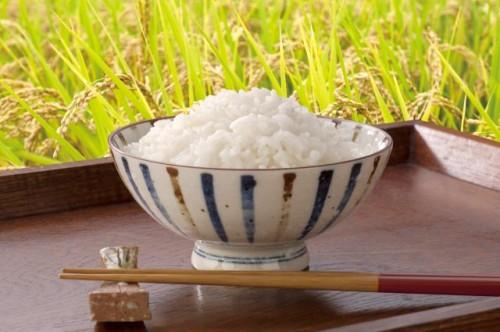 対象のお米を買うとたまご1パック分プレゼント♪
